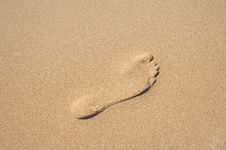Free Footprint In The Sand Stock Image - 13751831