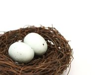 Free Bird S Nest With Eggs Royalty Free Stock Image - 13753846