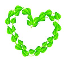 Heart Shaped Tree Branch Royalty Free Stock Images