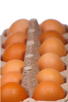 Free Eggs In Egg Carton Royalty Free Stock Image - 13754656