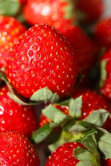 Free Fresh Strawberry Royalty Free Stock Photo - 13757045