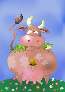 Thick Cow Royalty Free Stock Photos