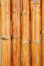 Free Bamboo Stock Photos - 13762523