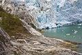 Free Glacier And Trees Royalty Free Stock Photos - 13764198