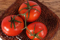 Free Three Fresh Red Tomato Royalty Free Stock Photo - 13767535