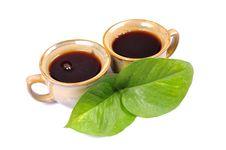 Black Tea Royalty Free Stock Photos