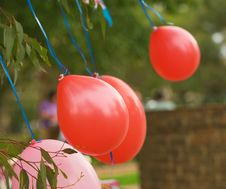 Birthday Celebration Balloons Royalty Free Stock Photos