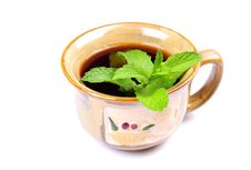 Free Mint Tea Royalty Free Stock Image - 13760336