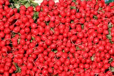 Free Radishes Display In A Produce Market Royalty Free Stock Images - 13760439