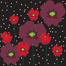 Free Black Background With Poppies Royalty Free Stock Photo - 13760505