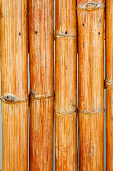 Free Bamboo Stock Photos - 13762523