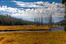 Free Lewis River - Yellowstone Stock Photo - 13763700