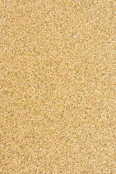 Free Sandy Texture Stock Image - 13763991