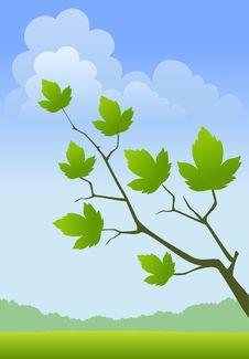 Free Spring Landscape Stock Image - 13764991