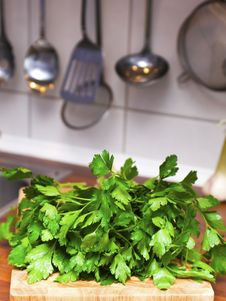 Free Fresh Parsley Royalty Free Stock Image - 13767016