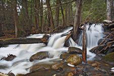 Cascade And Tree Royalty Free Stock Photo