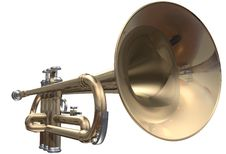 Free Trumpet Stock Photos - 13767593