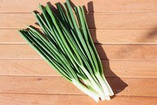 Free Spring Onion Royalty Free Stock Photos - 13768178