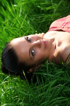 Free Portrait In Green Grass Royalty Free Stock Photos - 13769218