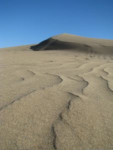 Dry Dune Stock Images