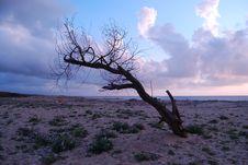 Free A Marine Sunset Stock Images - 13769344