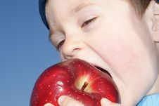 Little Boy Biting Apple Stock Image