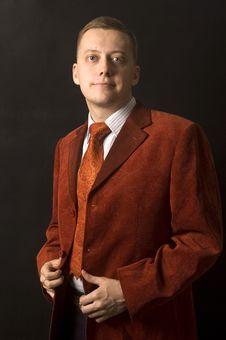 Elegant Young Businessman Royalty Free Stock Photo