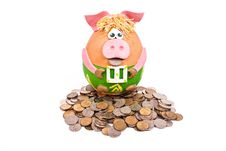 Free Piggy Bank And Money Stock Images - 13775584