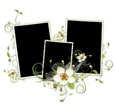 Beautiful Spring Frame With Apple Tree Flowers Stock Photography