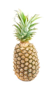 Ananas Stock Photography