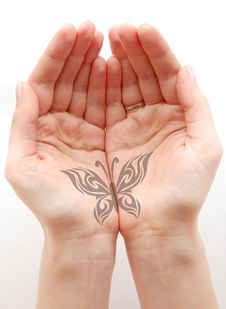 Free Hands Hold The Drawn Butterfly Royalty Free Stock Images - 13776409
