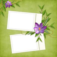 Free Card For The Holiday  With Flowers Stock Image - 13777201