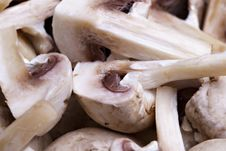 Free Edible White Button Or Champignon Mushrooms Stock Photo - 13777240