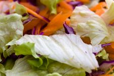 Mixed Salad With Lettuce And Carrot