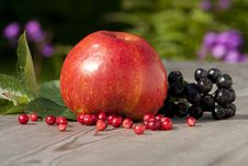 Free Red Apple And Berries Stock Photos - 13780633
