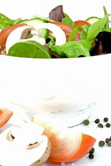 Free Fresh Salad Stock Images - 13781084