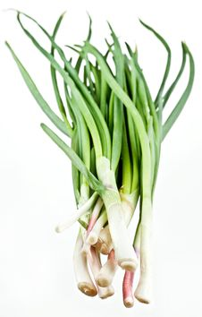 Free Green Onions Bunch Royalty Free Stock Photos - 13781168