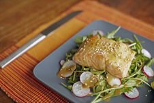 Free Salmon Fillet On Rocket Salad Stock Photo - 13781390