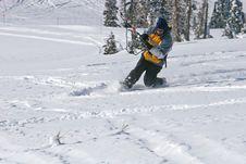 Free Kite Skier Royalty Free Stock Photo - 13783735