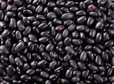 Free Beans Stock Image - 13785771