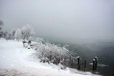 Snowy Misty Day Near A Lake Royalty Free Stock Image