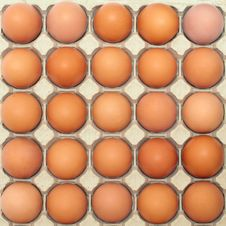 Background Of Eggs In A Protective Container