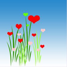 Free Grass With Hearts Stock Photography - 13788872