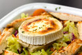 Free Rocky Mountain Salad With Slices Of Chicken Breast Stock Photos - 13797183