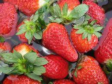 Free Strawberries Stock Photo - 13790750