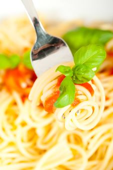Free Spaghetti With Tomato Sauce Stock Photos - 13791333