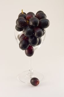 Grapes Cluster In Water Drops In A Glass Stock Images
