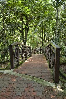 Free Birds Park In Kuala Lumpur Royalty Free Stock Photos - 13793988