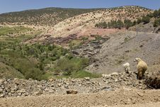 Free Chameleon Villages In The Atlas Mountains In Moroc Royalty Free Stock Image - 13794896