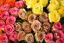Free Artificial Colored Flowers Royalty Free Stock Image - 13796306